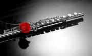 Музыка раннего барокко